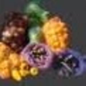 сетка для упаковки овощей и картофеля